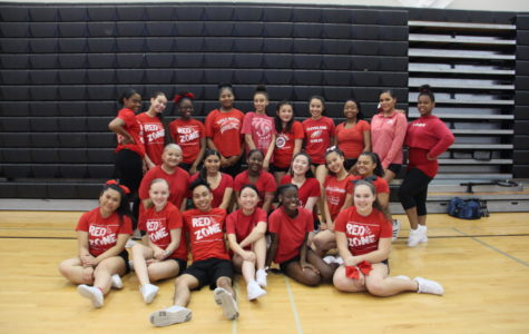 2018-19 cheer squad selected